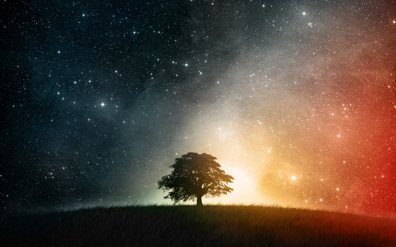 night_sky_tree_universe-1280x800